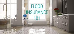 Flood Insurance 101